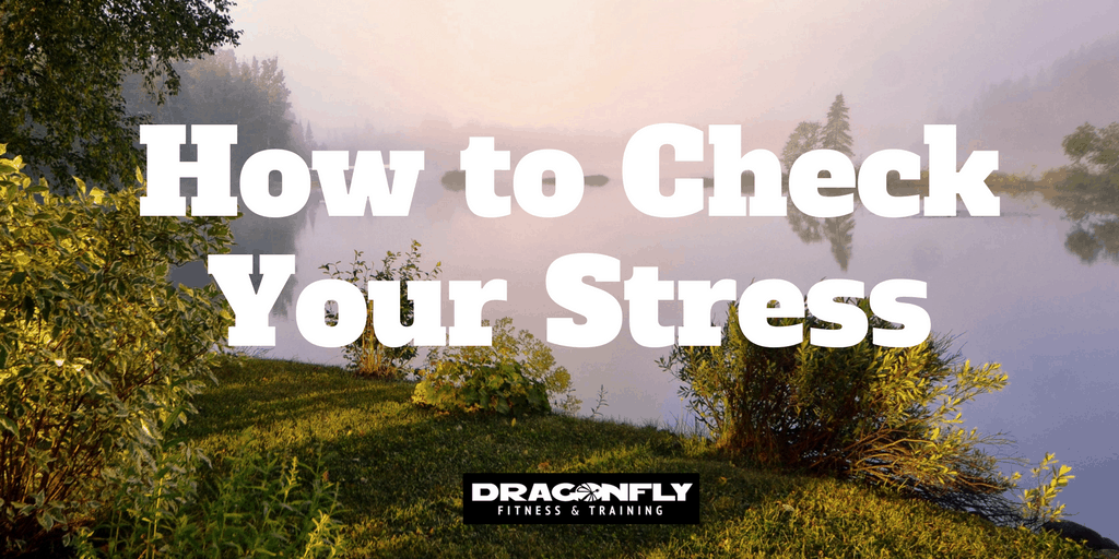 How to Check Your Stress
