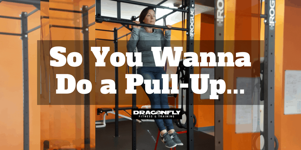 So You Wanna Do a Pull-Up…